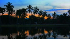 Sunset behind Palm Trees by Pond in Thailand Stock Footage
