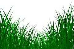 Grass illustration Stock Illustration