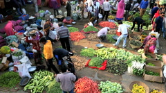 Rajasthan Udaipur India market male female agriculture Stock Footage