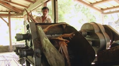 Man crushes sugar cane with the vintage crushing machine in Mauritius. Stock Footage