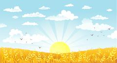 Countryside panorama in the morning - stock illustration
