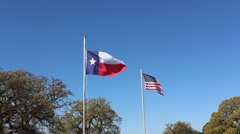 Texas and America flags blowing in the wind. Stock Footage