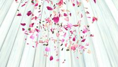 Rose petals drifting down onto wooden surface - animation - stock footage