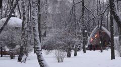 Gazebo in winter Park. - stock footage