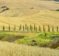 Stock Photo of Crete Senesi (Tuscany, Italy), landscape at summer