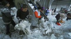 Workers in a factory for recycling collected plastic  for assembly line Stock Footage