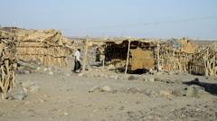 Afar village near salt lake, Ethiopia, Africa Stock Footage