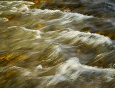 Spring rapid river Stock Photos