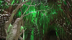Barcaldine-Tree Of Knowledge Inside Structure Stock Footage