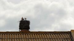 Stork Chimmney Nest Still C Stock Footage