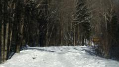 Snowy trail in Algonquin Provincial Park, Canada Stock Footage
