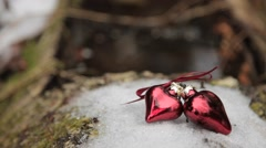 Two lovers heart lie on the snow in the woods. Stock Footage