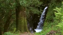 Beautiful waterfall in Glendalough Stock Footage