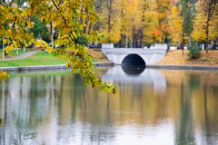 Fall in Kaliningrad - stock photo