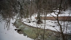 River in forest at winter Stock Footage
