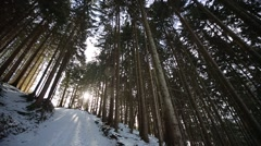 Winter Wonderland With Snow and Sun Arkistovideo