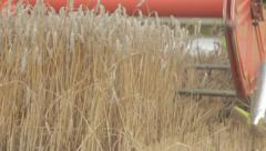 Harvester Cutting Wheat Field - Close Up Stock Footage