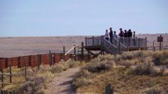 Spectators bison roundup - stock footage