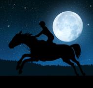 Silhouette of a rider on a running horse in night. Stock Photos