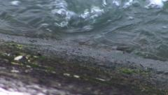River shore line water canal Stock Footage