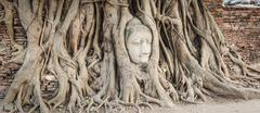 Buddha head in Wat Mahatat - stock photo