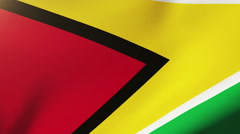 Guyana flag waving in the wind. Looping sun rises style.  Animation loop Stock Footage
