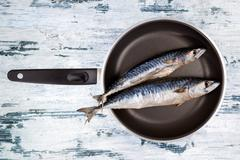Fresh mackerel fish on pan. - stock photo