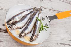 Fresh sardine fish on pan. - stock photo