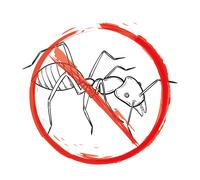 Danger sign with sketch of the ant Stock Illustration