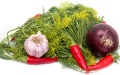 fennel, red pepper, red onion, garlic - stock photo