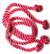 plait of red color on a white background - stock photo