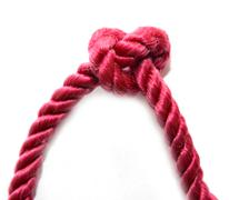 Plait of red color on a white background Stock Photos