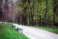 Beautiful avenue in to the park Stock Photos