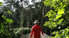Sabah Borneo Malaysia Asia rope bridge Rainforest tree male Stock Footage
