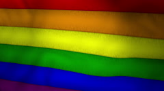 Gay Pride Rainbow Flag Waving - stock footage
