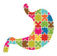 Stomach Jigsaw Puzzle Piirros