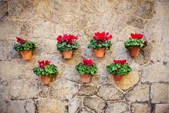 Beautiful mediterranean decoration on a wall in the historic village Valldemo Stock Photos