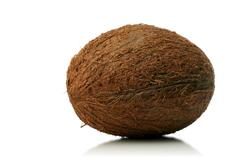 Stock Photo of Studio shot of coconut on white bacground