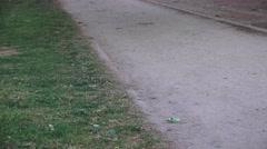 Jogging path, Sacramento's Mckinley Park Stock Footage