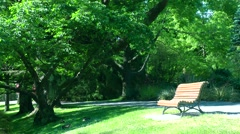 Bench in a park, Christchurch, New Zealand Stock Footage