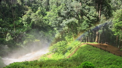 Rainbow at a tropical rain forest Stock Footage