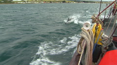 Dolphins, moving boat, Land of Fire Stock Footage
