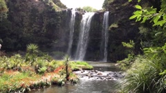Whangarei Falls in New Zealand Stock Footage