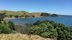 Pan to Sandy Bay Motutapu Island Stock Footage