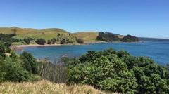 Sandy Bay Motutapu Island Stock Footage