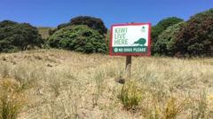 Kiwi sign Stock Footage