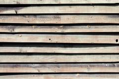White and light grey wood texture. background old panels - stock photo