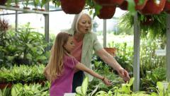 Elderly woman buying plants with his granddaughter - stock footage