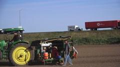 Farming in California,tomato growers, Stock Footage