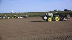 Dry farmland ,planting tomatoes Stock Footage